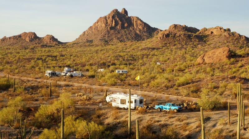 Camped on the Ajo Scenic Loop