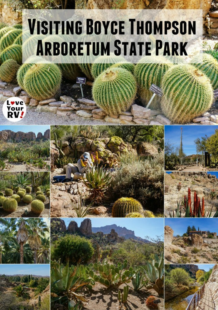 Visiting Boyce Thompson Arboretum State Park east of Phoenix Arizona. Touring the beautiful cactus gardens and desert landscapes Love Your RV blog - https://www.loveyourrv.com