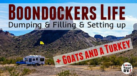Slice of RV Boondocking Life – Plus Cute Goats and a Majestic Turkey