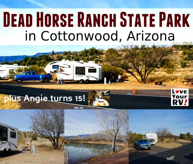 Continuing our 2017-18 Snowbird Adventures with a Trip to Dead Horse State Park in Cottonwood Arizona plus our beagle turns 15 by Love Your RV blog - https://www.loveyourrv.com