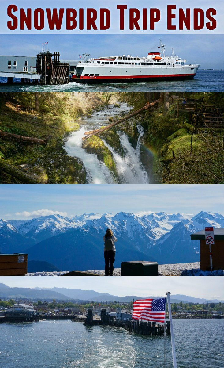 Last days of the 2017 - 18 Snowbird Aventures end with a Rainforest Hike, Epic Mountain Vista and an International Ferry Ride  https://www.loveyourrv.com/rainforest-hike-epic-mountain-vista-and-an-international-ferry-ride/