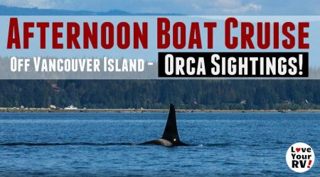Afternoon Boat Cruise Near Campbell River, BC – Orca Sightings!