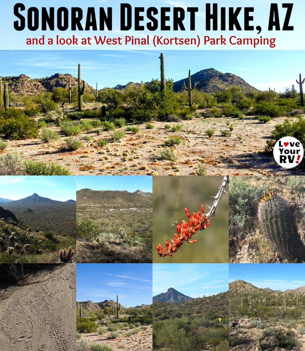 Hiking the Arizona Sonoran Desert near the West Pinal County Park Campground by the Love Your RV blog - https://www.loveyourrv.com