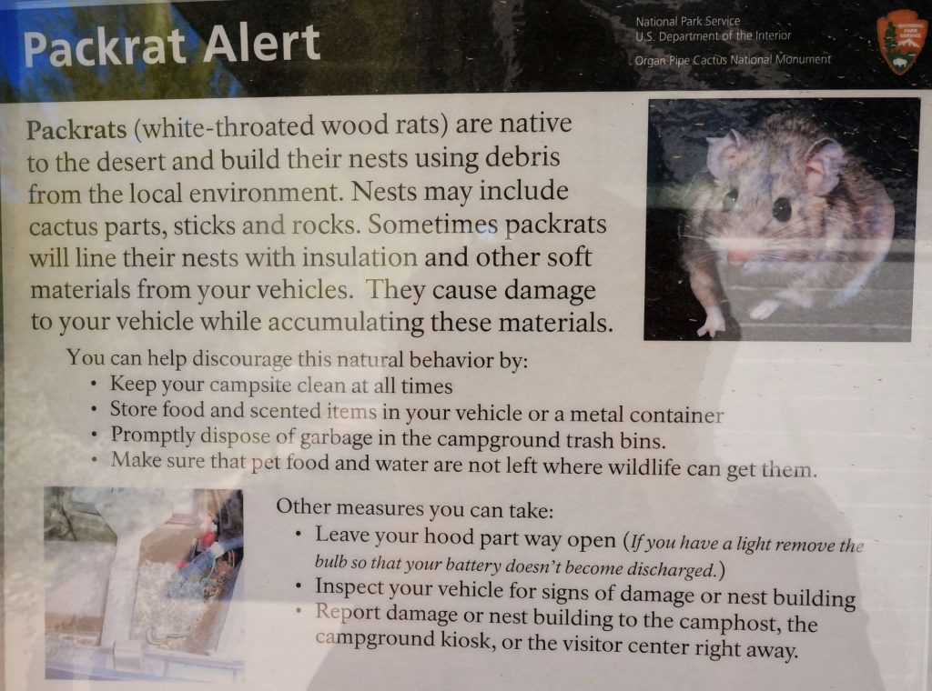 National Park Pack Rat warning