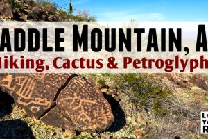 Saddle Mountain Hike Feature Photo