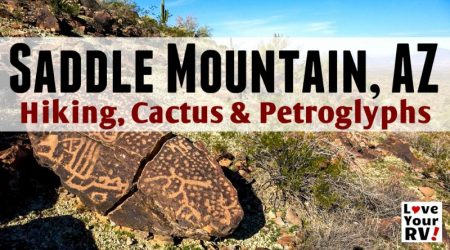 Morning Hike Saddle Mountain, AZ – Petroglyphs, Cactus and Sweeping Views