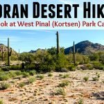 Sonoran Desert Hike Feature Photo