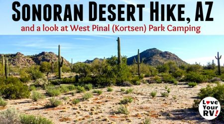 Morning Hike in the Sonoran Desert near Pinal West County Park, AZ