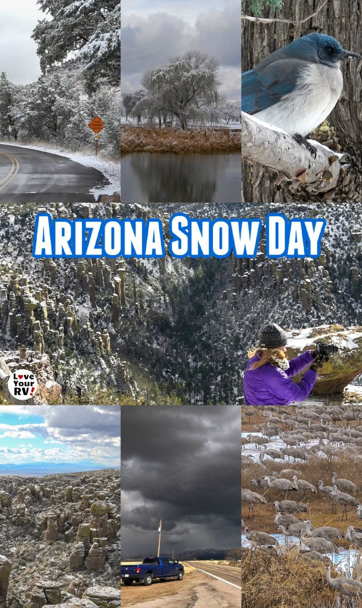 Arizona Snow Day Trip to Chiricahua National Monument and Whitewater Draw Wildlife Sanctuary by the Love Your RV blog - https://www.loveyourrv.com/snowy-visit-to-chiricahua-national-monument-arizona/