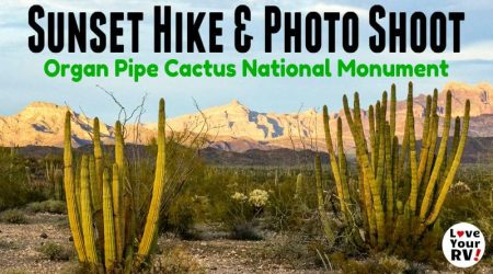 Sunset Photography Hike in Organ Pipe Cactus National Monument