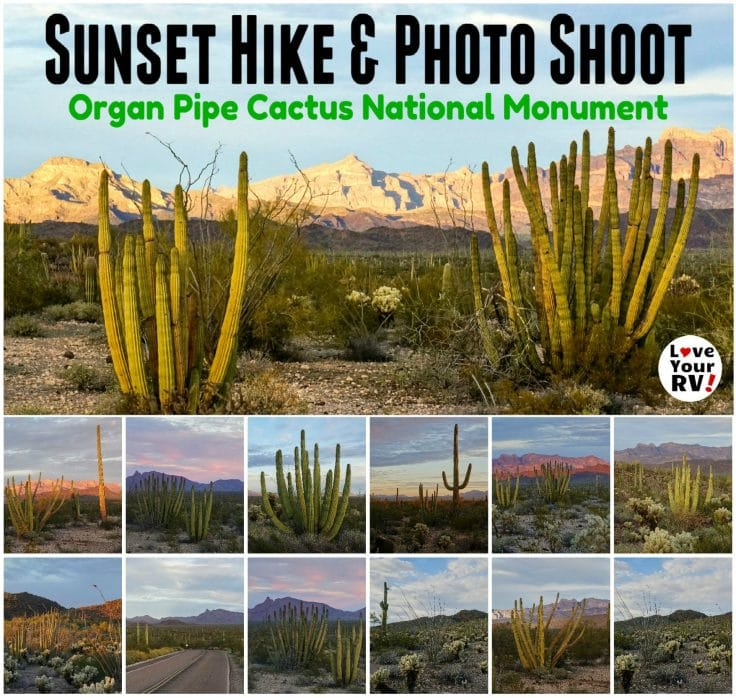 Video footage of a Sunset Photo Hike in Organ Pipe Cactus National Monument near Twin Peaks Campground - https://www.loveyourrv.com/sunset-photography-hike-in-organ-pipe/