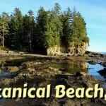 Botanical Beach Feature Photo