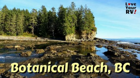 Remarkable Botanical Beach on Vancouver Island