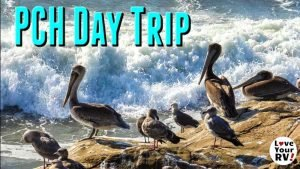 Day Trip Along California Highway One Feature Photo