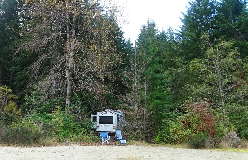 Buttle Lake Campground Site 14