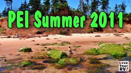 PEI – Beagles Love Red Sand Beaches! (Throwback Video August 2011)