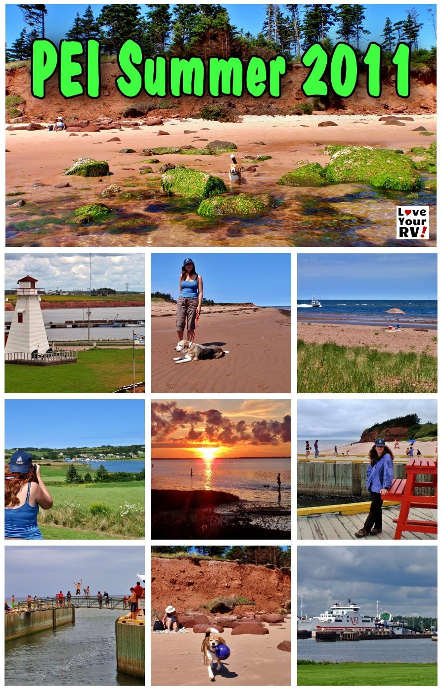 PEI Summer 2011 Throwback Video - Beagles Enjoy the Red Sand Beaches