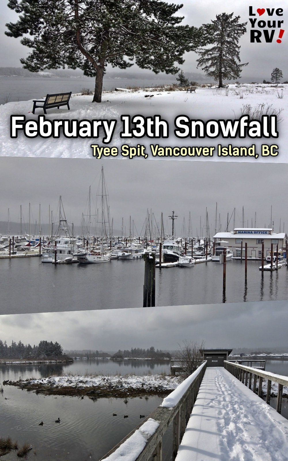 Peaceful Walk in the Snow February 13th on Vancouver Island Tyee Spit Campbell River BC